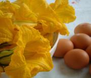 Frittata ai fiori di zucca
